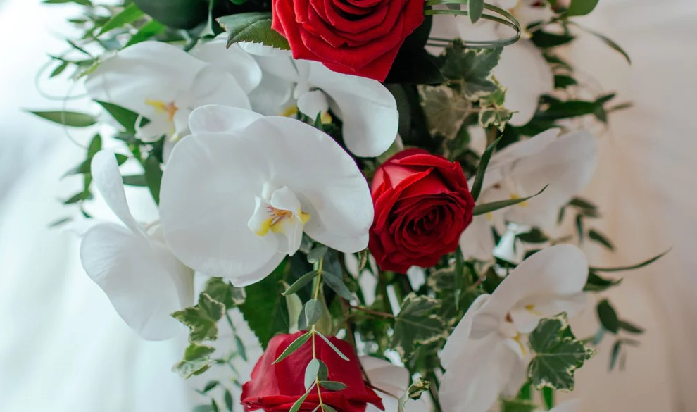 A bouquet of red and white roses