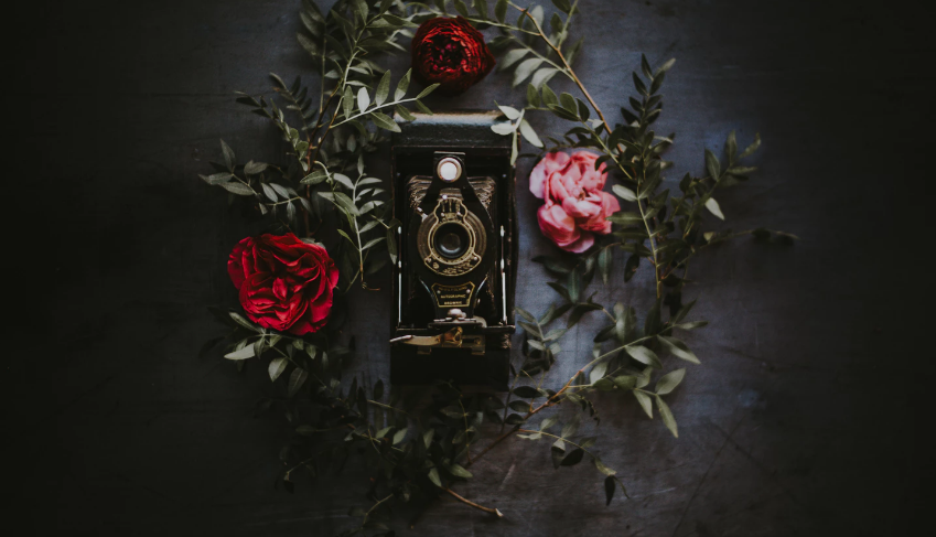 Vintage camera with roses